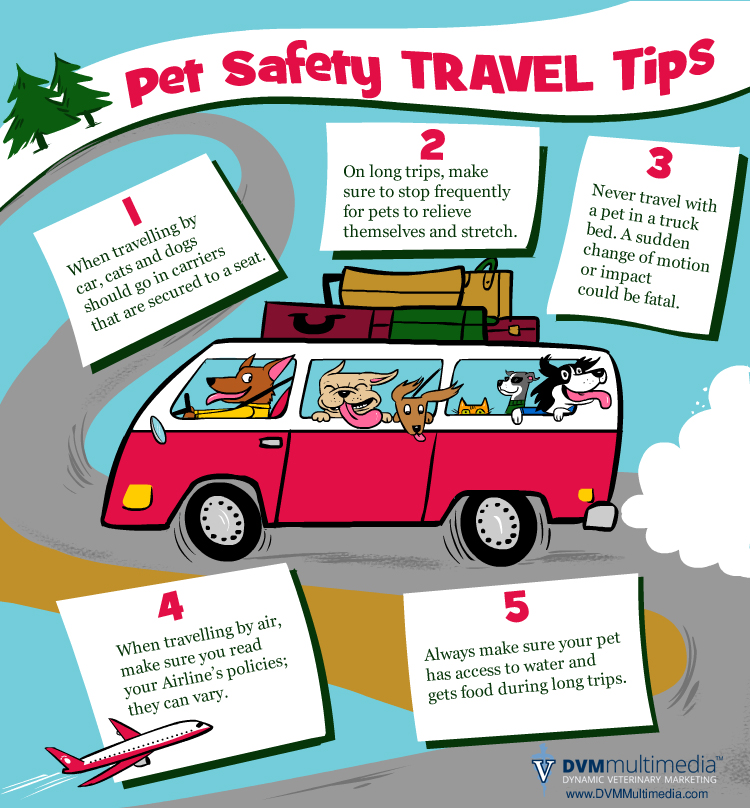 travel-safety-tips